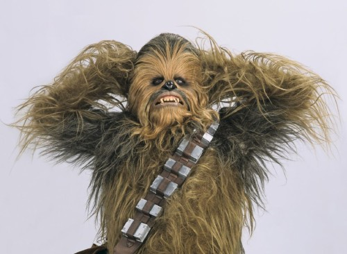 1-houston-texans-chewbacca_pg_600