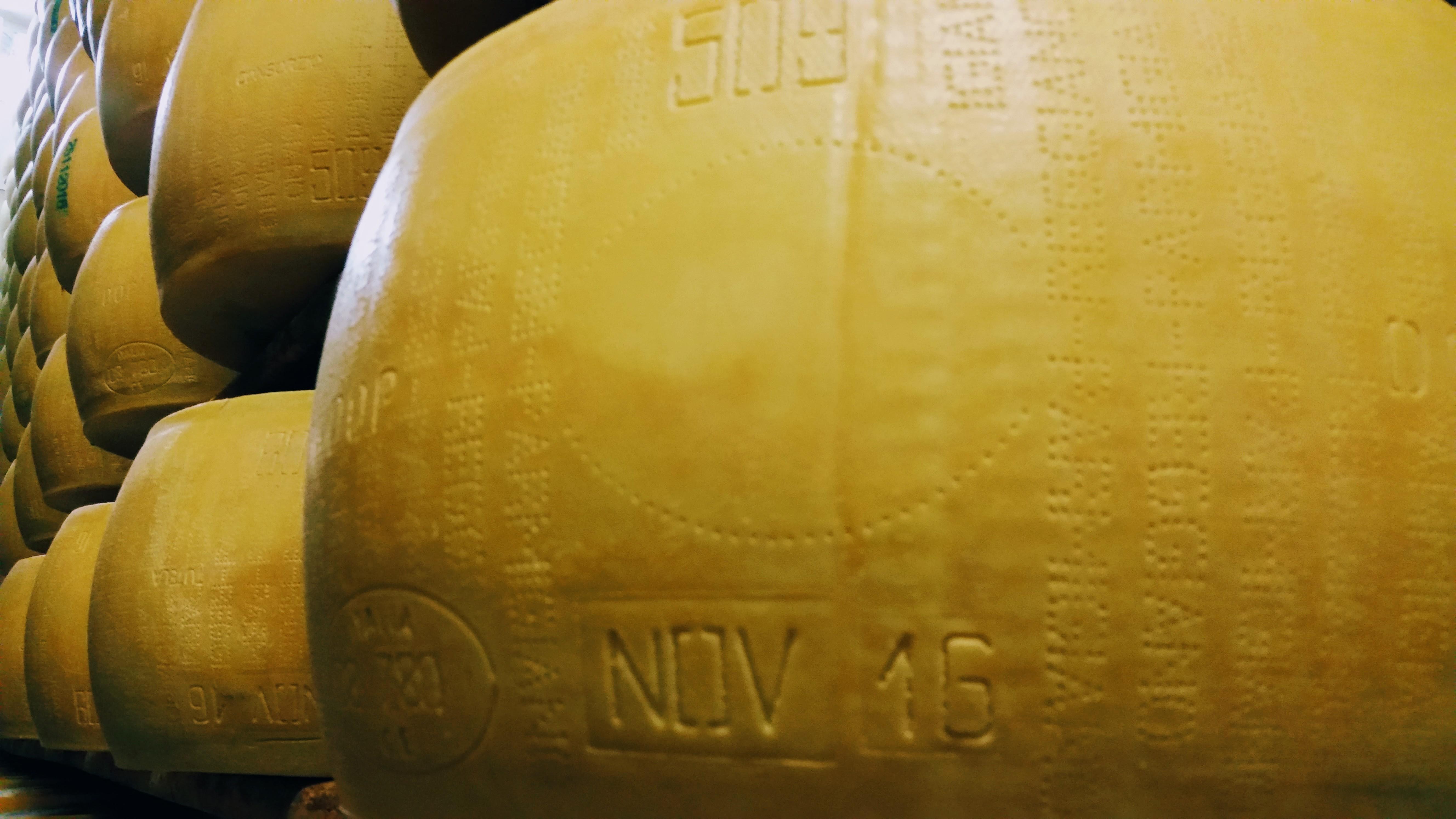 509 parmigiano reggiano no export brand